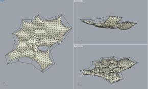 freeform_pentagon-cell-cluster